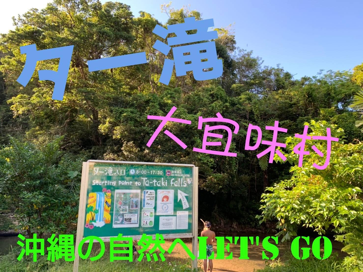 自然好き必見👀沖縄は海だけじゃない!休日満喫スポットの紹介(@ター滝)