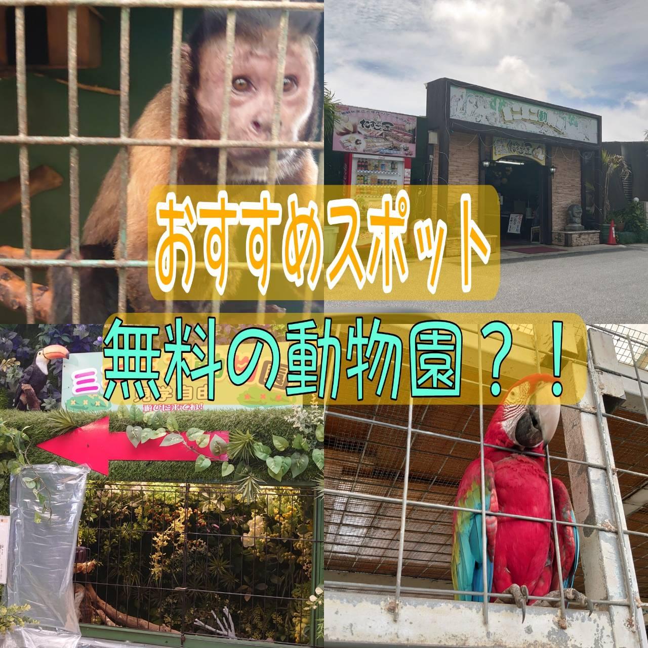☆沖縄おすすめ隠れスポット紹介☆その㊹(@ミニミニ動物園)