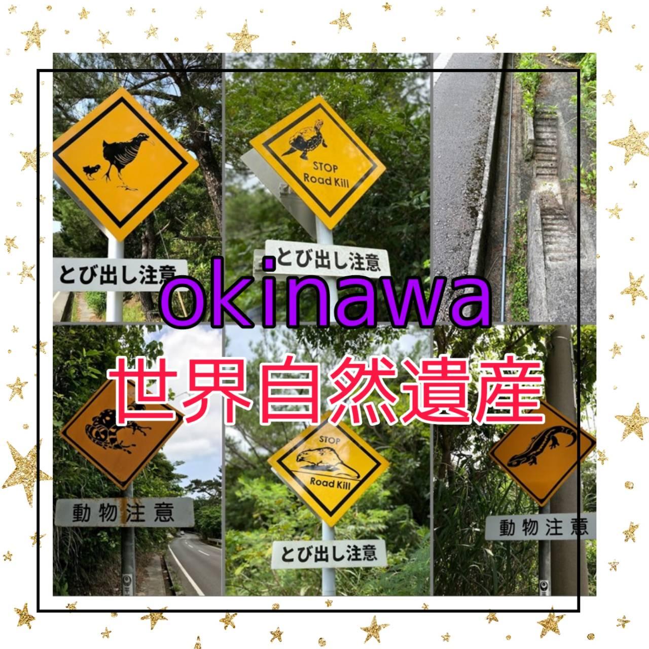 【PRチームおすすめ情報②】世界遺産・珍しい動物標識!